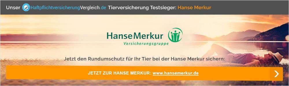 Jetzt Tierversicherung bei der Hanse Merkur abschließen.